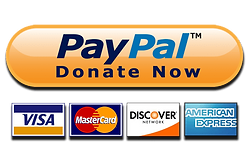 Paypay Donate Now.PNG