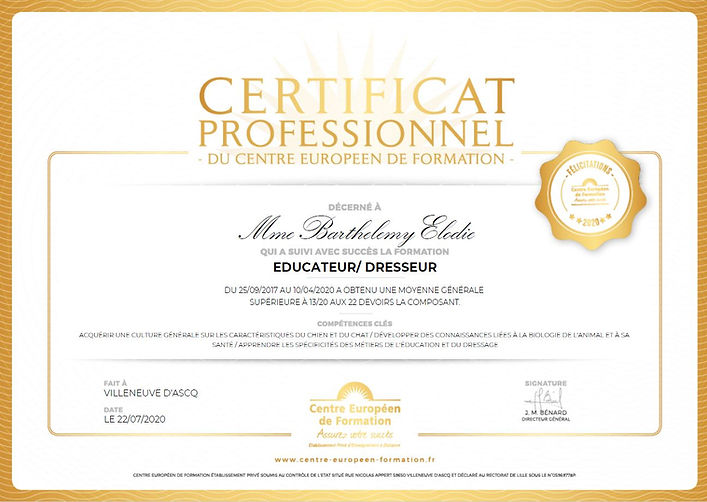 Certifica Professionnel 2020.JPG