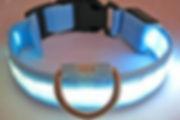 collier-lumineux-pour-chien-aux4pat salon de toilettage nimes,occitanie.jpg
