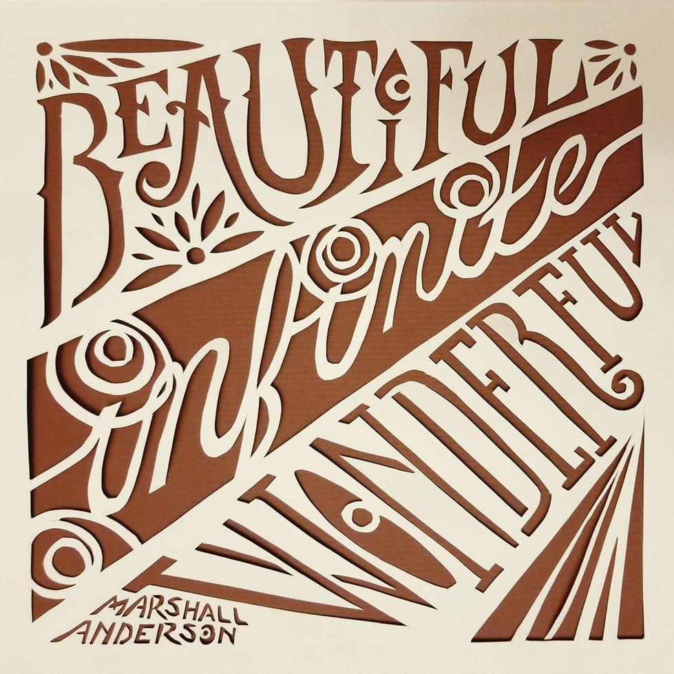Marshall Anderson: Beautiful, Infinite, Wonderful (2018)