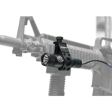 Cadet- 490 Lumen LED Weapon Package