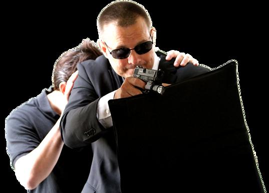 MTS - Multi-Threat Shield