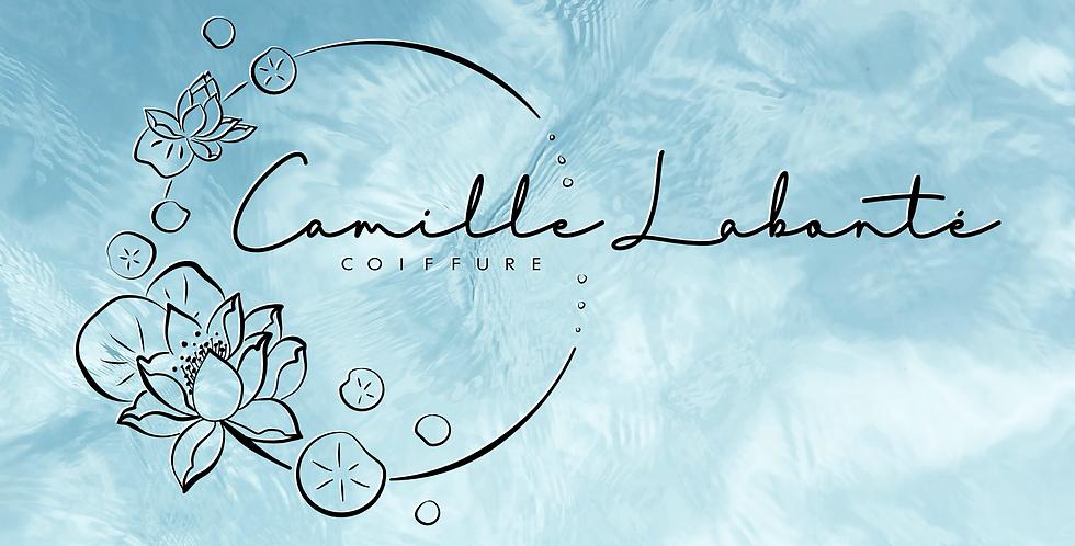 Logo - Illustration + Textes