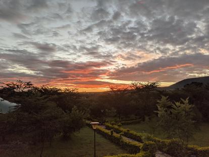 Safari at Maasai Mara, Kenya