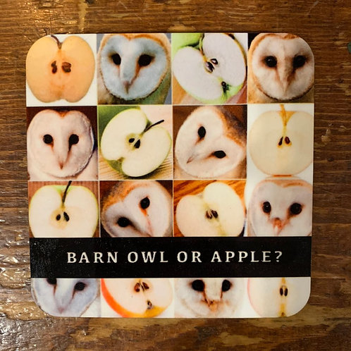 Barn Owl or Apple Coaster