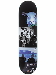 Polar Team I Like It Here...Sheep in Motion