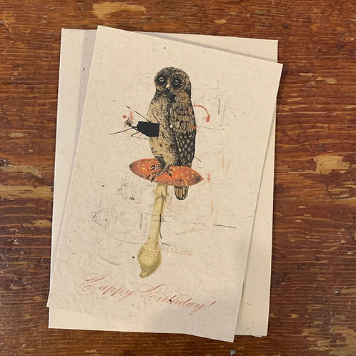 Notecard~Happy Birthday Owl