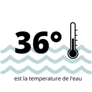 36° (1).png