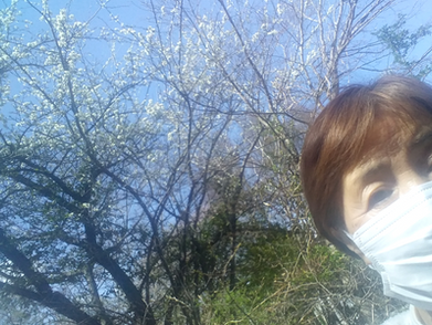 現在の森の様子(5月4日)