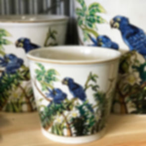 These stunning pots have only just grace