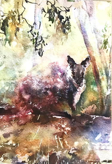 Penny Deacon Greeting Card - Wallaby