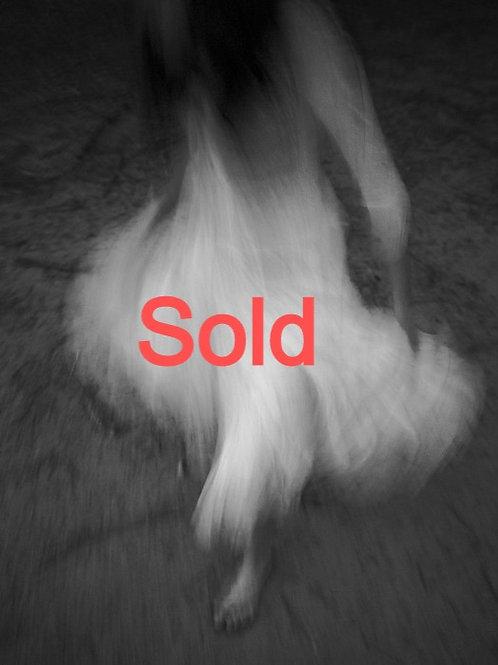 Ghost Dancer by Donna Garcia
