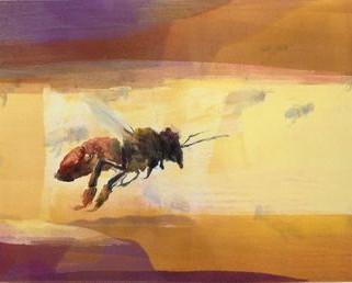 Honeybee Flight III