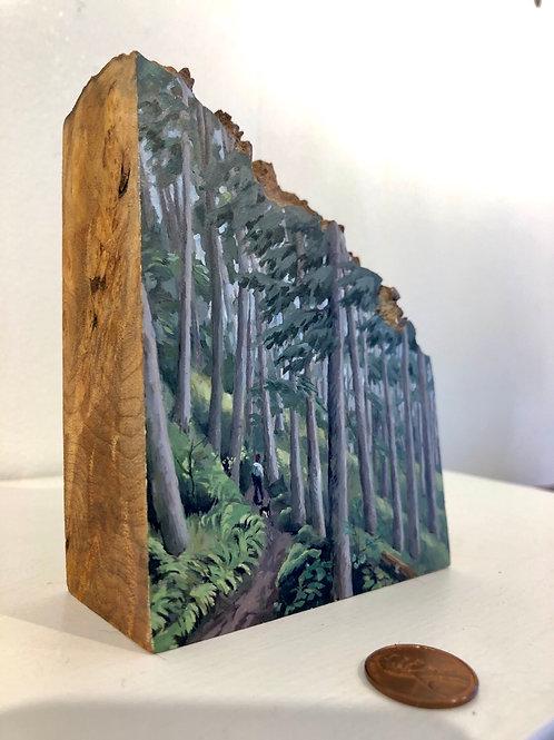 Timberline Path
