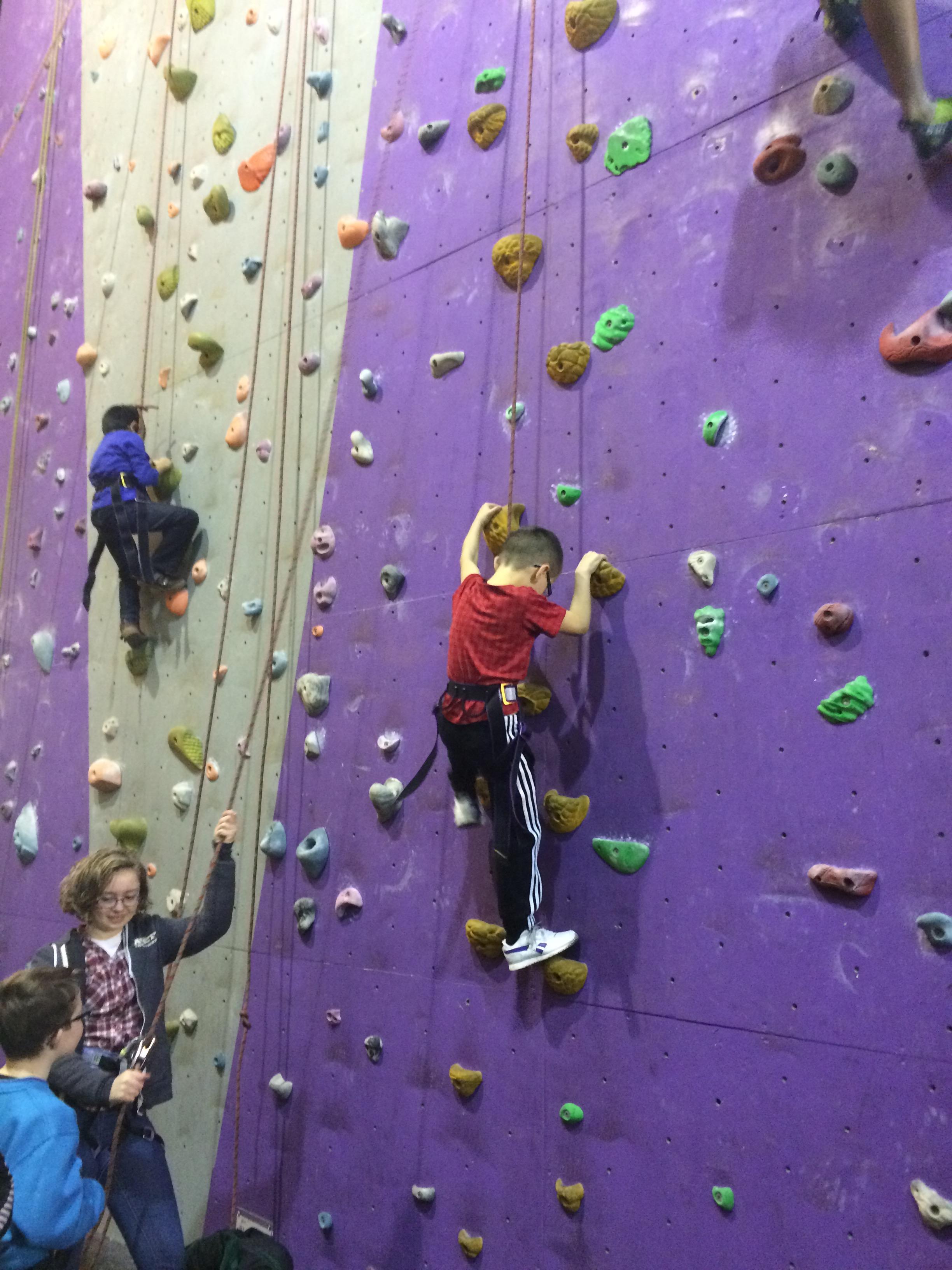 Beavers' Climbing Wall