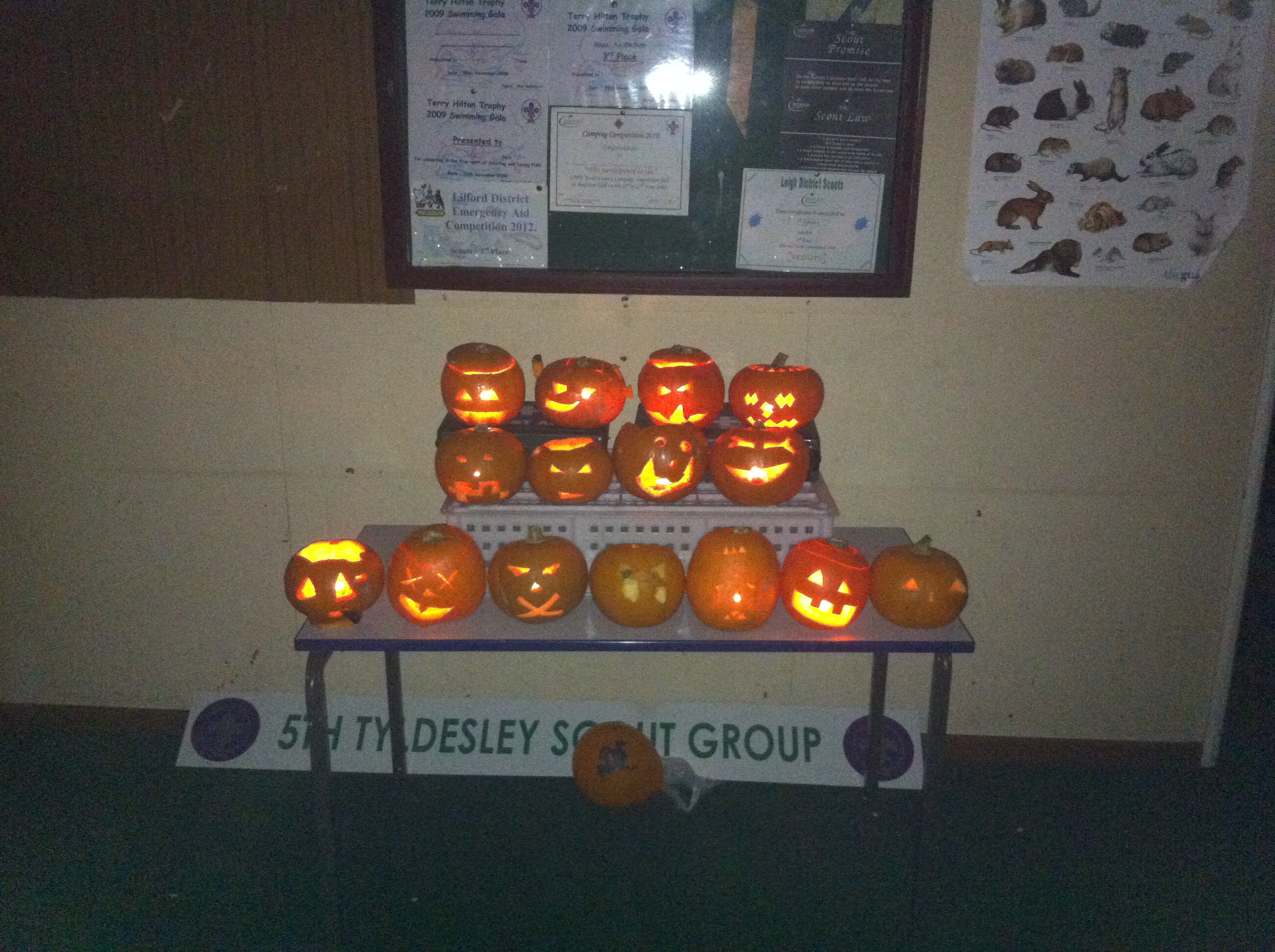 The Scouts' Carved Pumpkins