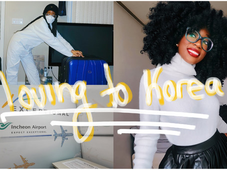 The Honest Truth of Getting A Work Visa in Korea - STEP BY STEP E2 VISA APPLICATION