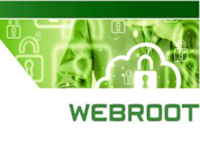Protezione in tempo reale degli endpoint da virus, malware e attacchi zero-day senza aggiornamento delle firme.