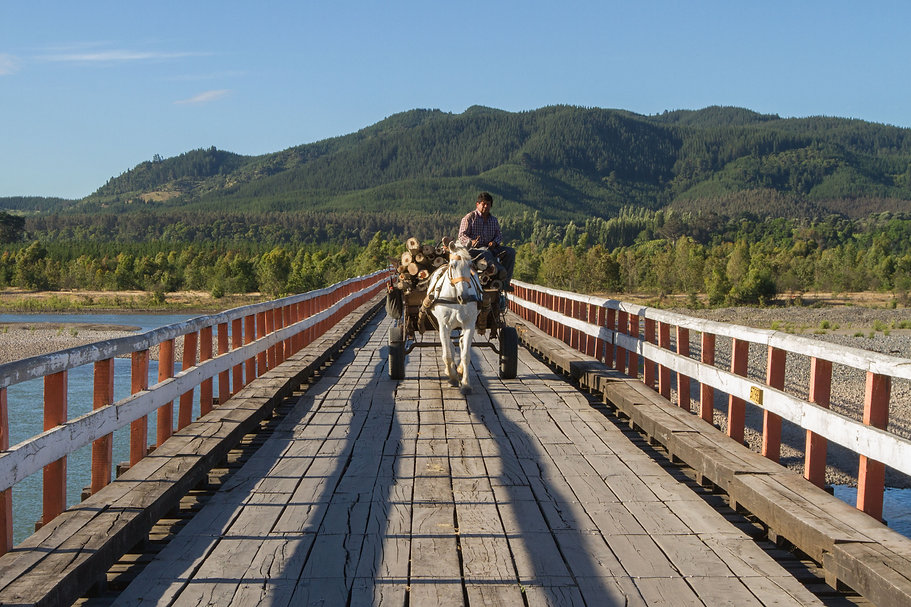 puente confluencia.jpg
