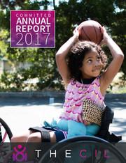 CIL Annual Report 2017
