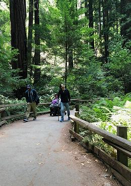 Muir Wood Travel Training