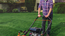 When did you last prune your lawn?
