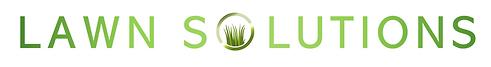 NEW LOGO FORMAT PNG LS.png