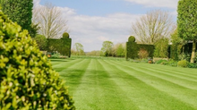 Embrace your lawn this Spring- Simple, Efficient and Effective!