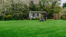 What does an expert's lawn look like?