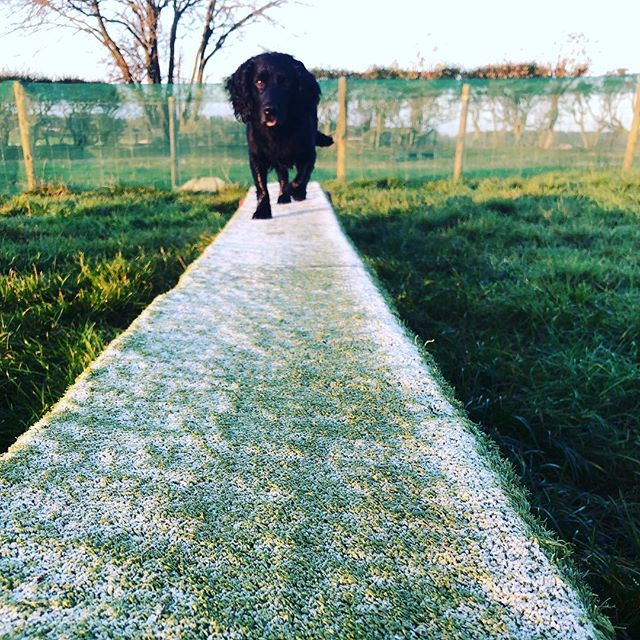 It was a #frosty start to the day for th