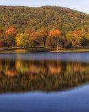 autumn pond.jpg