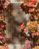 Autumn Window.jpg