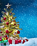 Christmas Tree with Stars.jpg