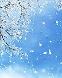 Winter Branches.jpg