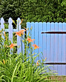 Blue Gate.jpg