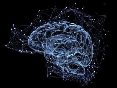 cerebro-esquina_0.jpg