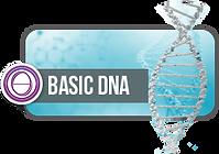 LOGO ADN BASICO.png