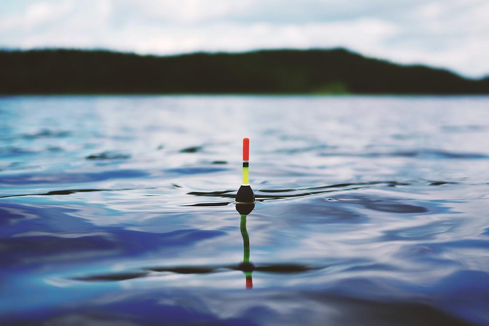 bobber in water