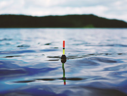 Simple Tools You Need To Go Fishing