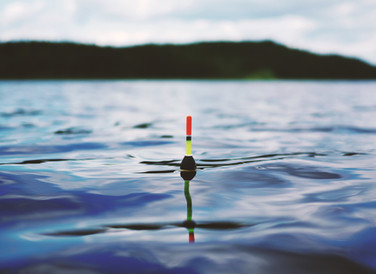 Using real-time info to optimize fishing operations