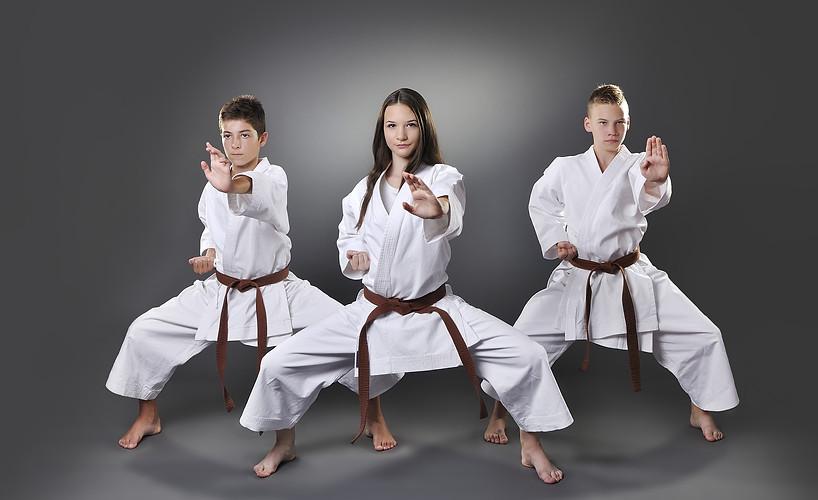 Self- Defense   /    Karate