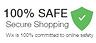 100% SAFE secure Shopping logo