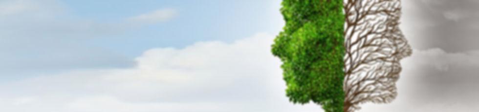 logo windblow.jpg