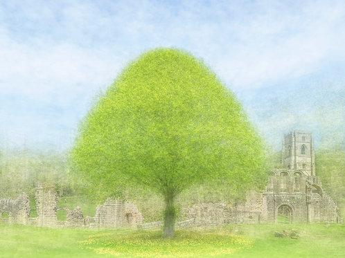 Summertime at Fountains Abbey
