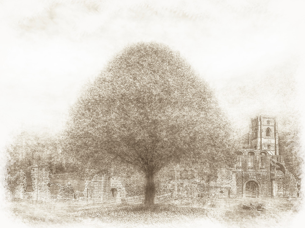 Here, Sepia tones shows Fountains Abbey ruins, which are the largest monastic ruins in the country. This scene shows part of the nowadays well-tended grounds of the abbey. The abbey was founded in 1132 by 13 Benedictine monks from St Mary's in York. They'd grown fed up of the extravagant and rowdy way that the monks lived in York and so they escaped seeking to live a devout and simple lifestyle elsewhere. This was how they came to Fountains.