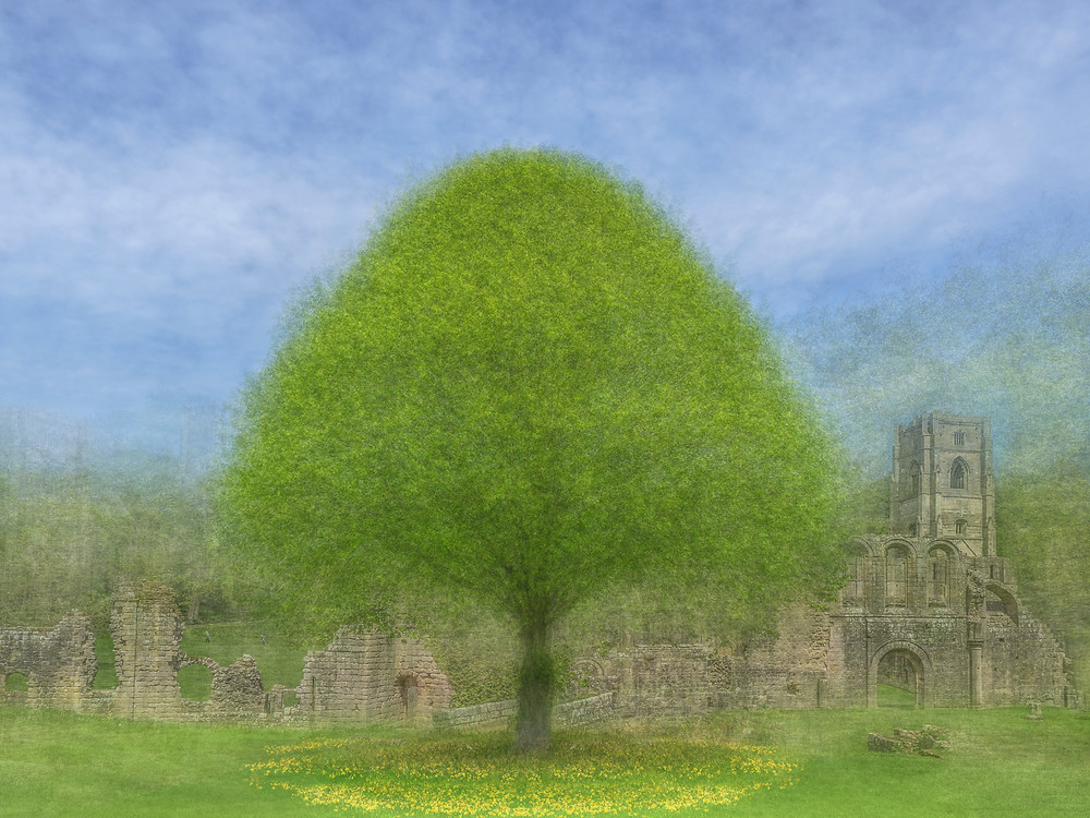 Beautifully cultivated nature shows tree and flowers against the backdrop of ancient Fountains Abbey