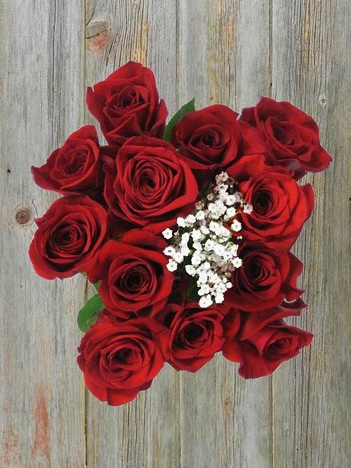 dozen roses wrapped in cellophane