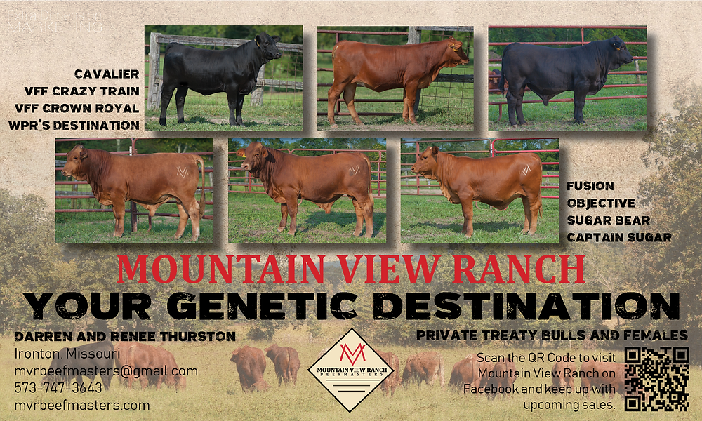 Mountain View Ranch Ad