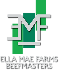 Ella Mae Farms Rnach Logo Design