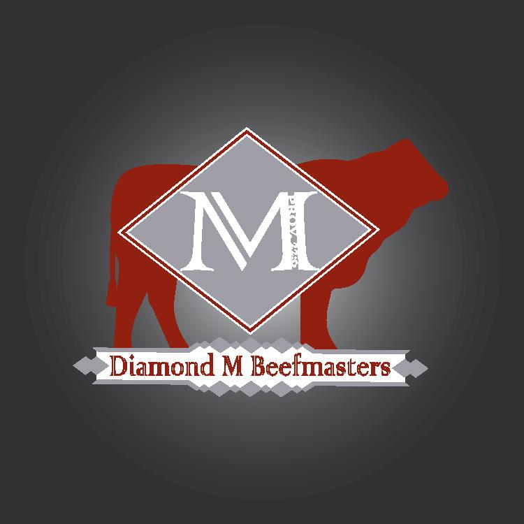 Diamond M Beefmasters